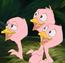 Little Birds TNBCAMT
