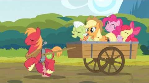 Apples de Corazón R