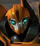 Bumblebee Prime