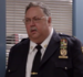 Capitan McGintley Brooklyn 99