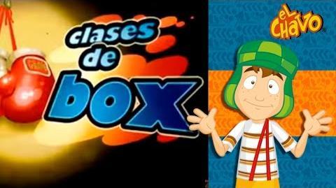 Clases de box Chavo Animado-1