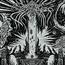 SC2-AncientXelNaga