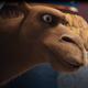 Star-camels