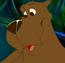 Bear TNBCAMT