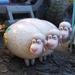 Billy, Goat, Gruff - TS4R