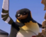 PinguinoBrasileño SU
