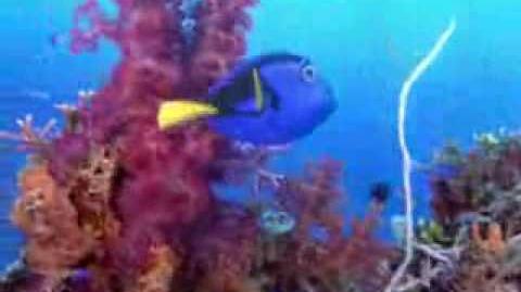 Explorando el Arrecife con Buscando a Nemo (español)