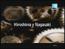 Logo en español de Hiroshima y Nagasaki (TV) (CE)