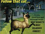 Un gato del FBI (1965)