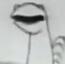 Cartoon Dinosaur (Ep10-S2) MB