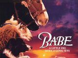 Babe: El puerquito valiente