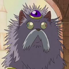 Rey de los gatos en <a href=