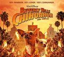 Una chihuahua de Beverly Hills