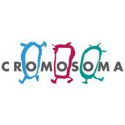 Cromosoma avar