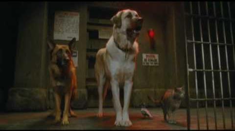 Como Perros y Gatos 2 Trailer Doblado