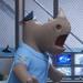 Rinoceronte1 Sing