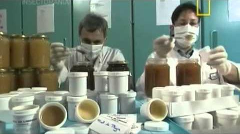 NatGeo Insectomania ep3 - Insectos Medicos Español Latino parte 1 4