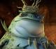 Atilla the frog