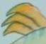 Veggie 2 12 TCT