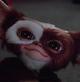 Gizmo - Gremlins 2