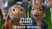 Peter Rabbit Conejo en Fuga - Tráiler Global