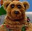 Bunnie Bear AS