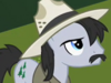 MLP2x8PineBreeze