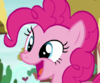 Pinkie Changeling asks how the festival was S6E25
