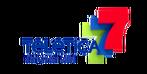 Teletica-1
