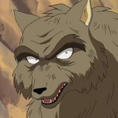 Líder de la tribu de los lobos también <a href=