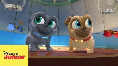 🎶 La Canción de la Misión de Puppy Dog Pals