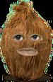 Ao Coconut