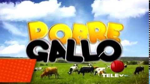 Pobre Gallo - TELEVEN Gran Premiere Proximamente