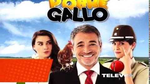 Pobre Gallo - TELEVEN Gran Premiere Proximamente Versión II