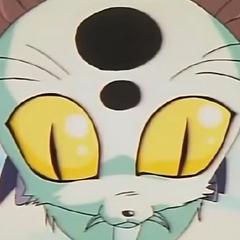 Tiger Cat en <a href=