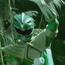 PRDT-T01E20-GreenRanger