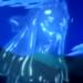 Espíritu del agua