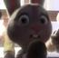 Rabbit Reporter