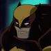UTS-Wolverine