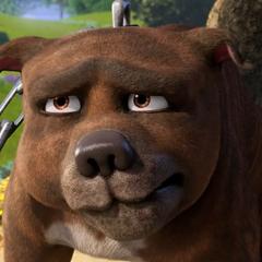 Rufus, el perro en <a href=