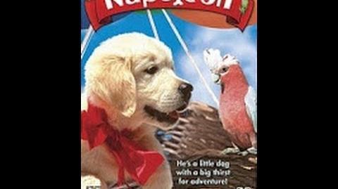 Napoleón El Perrito Aventurero (para niños) - películas completas en español latino