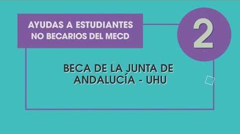 Plan Becas Propias UHU 2018