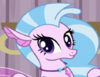 Silverstream seapony ID S8E2