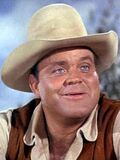 Bonanza (Hoss Cartwright)