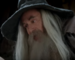 TheStarvingGamesGandalf