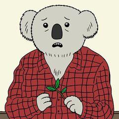 Doug, El hombre koala en <a href=