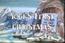 Yogui's firts christmas