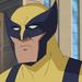WYX-Wolverine