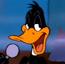 Daffy Duck Singing DDQ