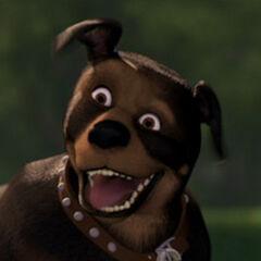Nugent, el perro en <a href=